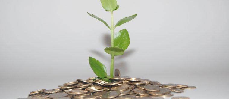 בעלי עסקים: 5 דרכים לשפר את העולם באמצעות הכסף שלכם